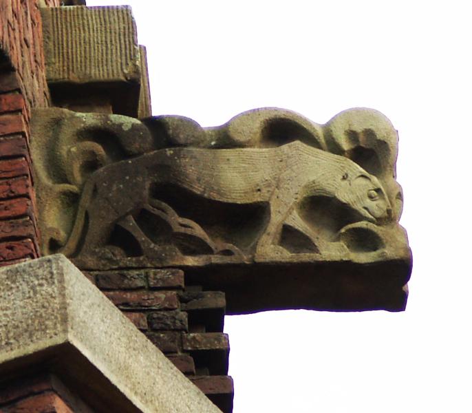 kraagsteen: beer - foto: loek van vlerken 01.11.2012