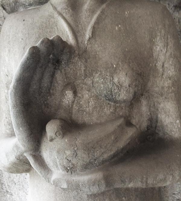 Vrouw met vogel koesterend in haar handen (detail) - foto: loek van vlerken 04.01.2018