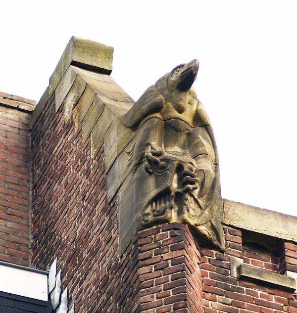roofvogel foto: loek van vlerken 22.02.2012