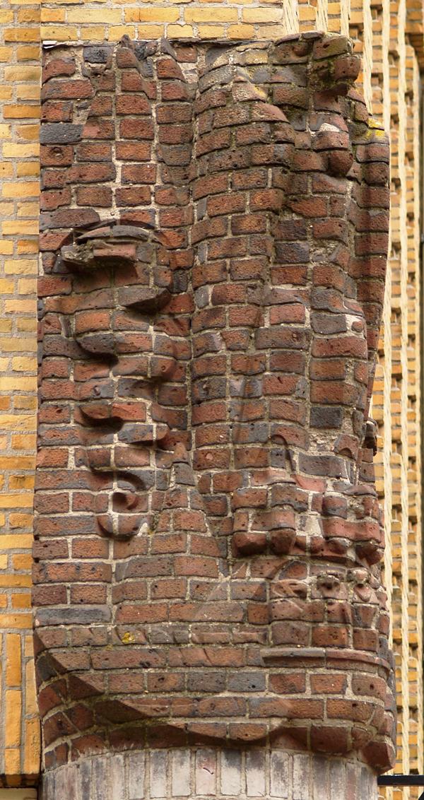 adelaar met nest jongen - foto: loek van vlerken 14.04.2011