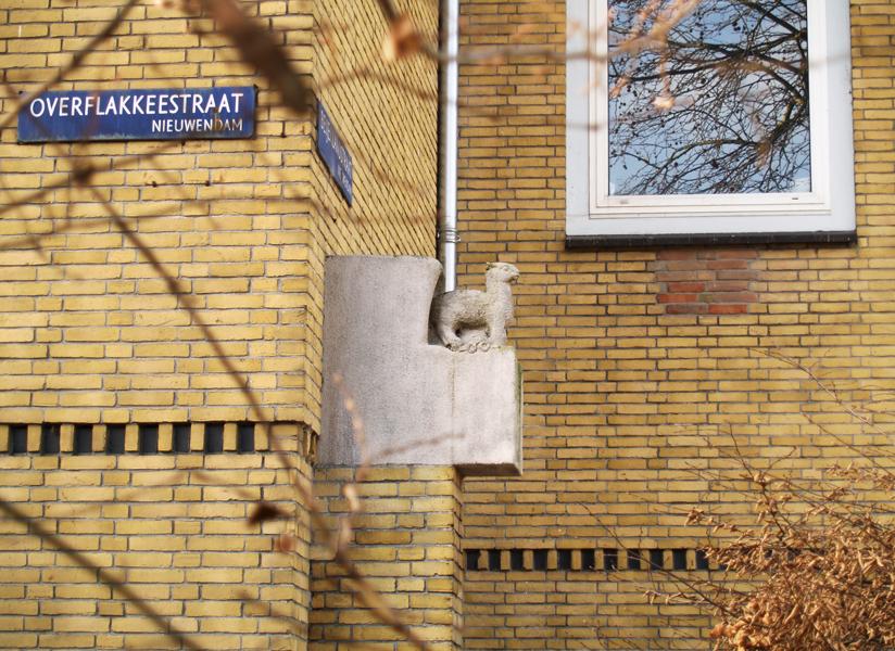 staand lam - foto: loek van vlerken 06.01.2012