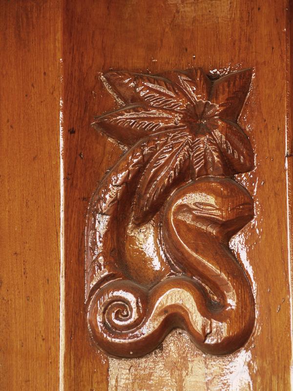 slang en palmboom - foto: loek van vlerken 20.04.2011