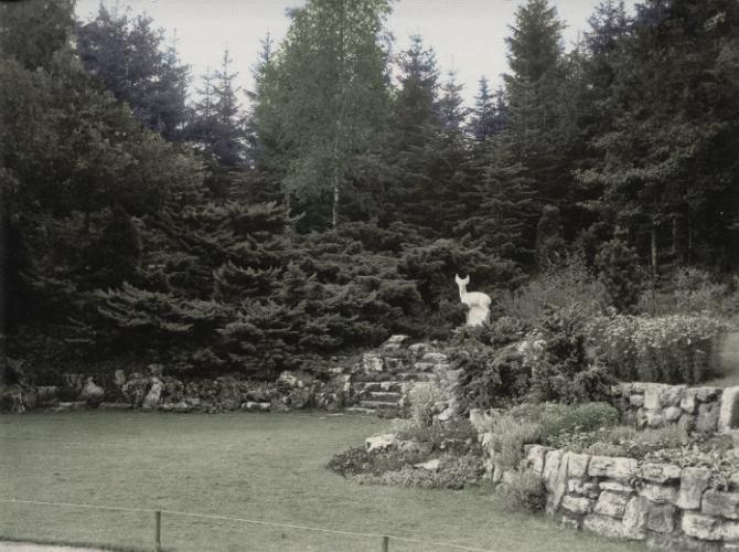 park berg en bosch - foto: coda apeldoorn