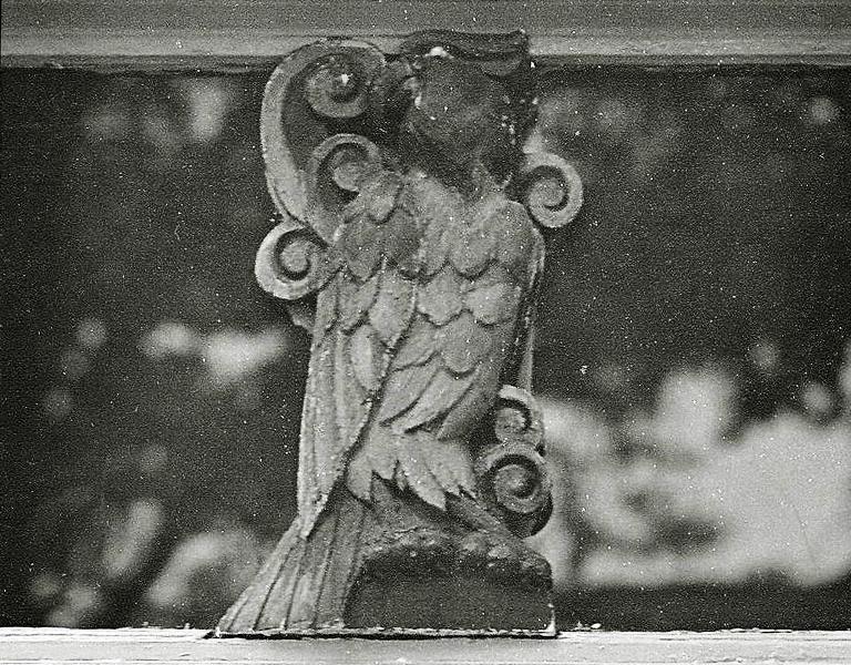papegaai - foto: museumwoning vreewijk - 2018