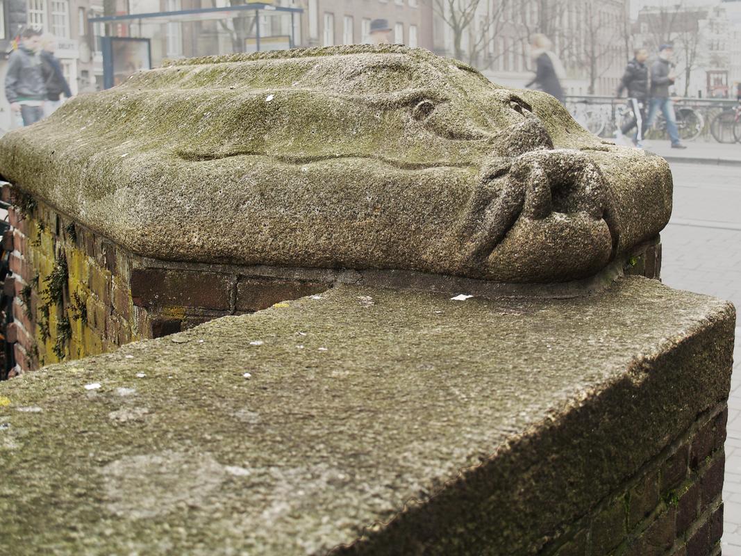 fabeldier - foto: loek van vlerken 06.03.2012